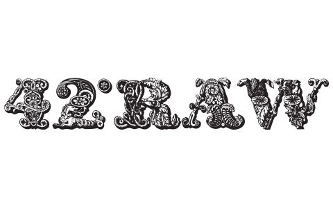 42RAW logo sort 480x300